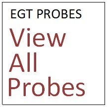 View all our EGT Probes